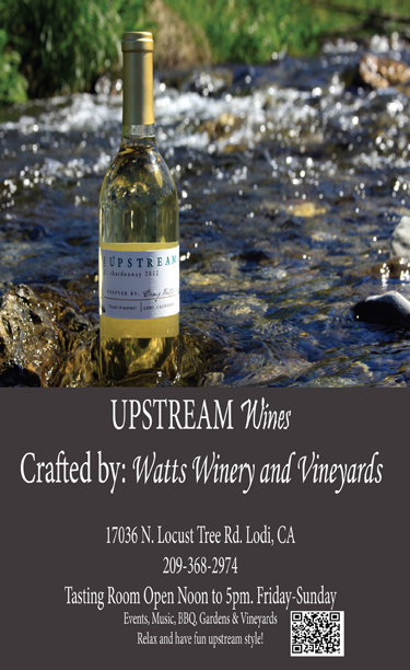 UpStream ad 92013