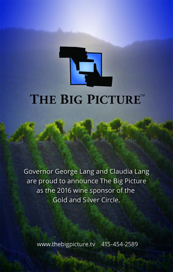 big-picturesc16